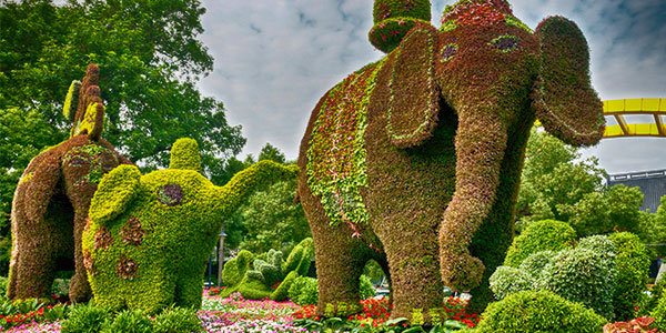 topiary-pachyderms