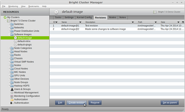 Bright Cluster Manager