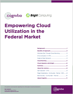 cloud-utilization-in-federal-market.png
